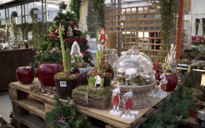 Il Natale di RF Giardini
